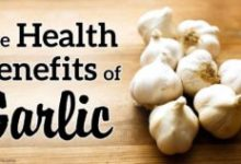10 Health Benefits Of Garlic And Its Uses