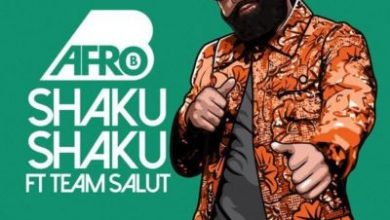 Afro B – Shaku Shaku ft. Team Salut